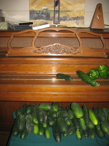 cukes colonizing even the piano, which I cannot play till they're gone, a heck of an incentive for sure for one who plays every day!